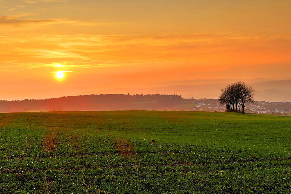 Sunset and field, Rhineland-Palatinate (Rheinland-Pfalz), Germany, Europe