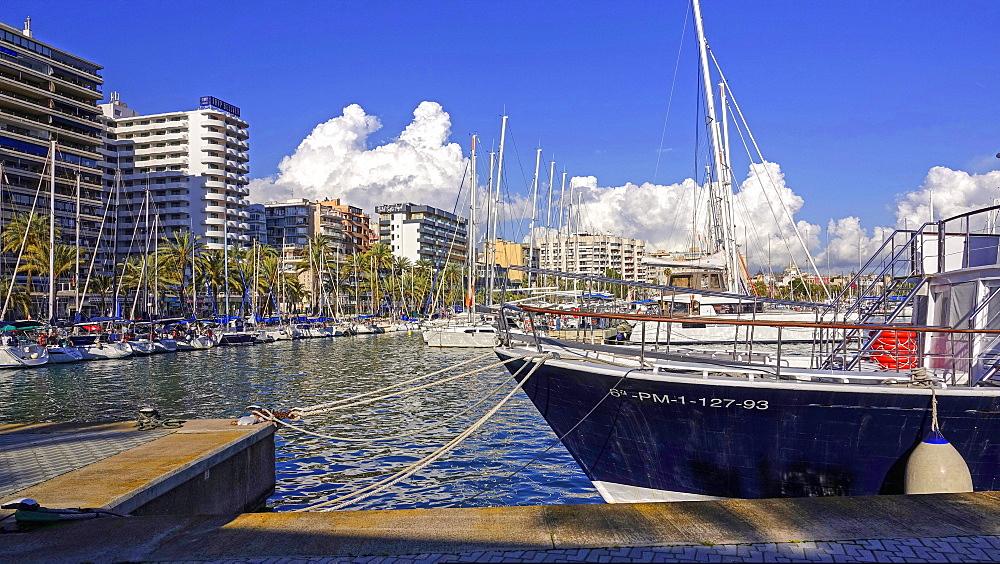 Marina of Palma de Mallorca, Majorca, Balearic Islands, Spain, Mediterranean, Europe