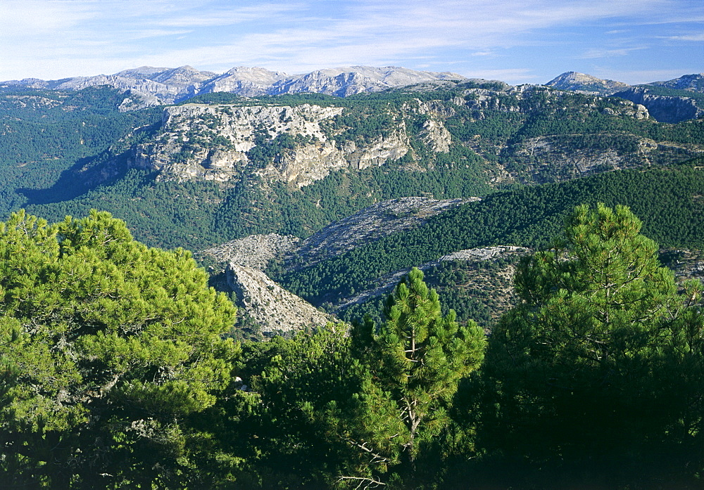 Cazorla National Park, Jaen, Andalucia, Spain - 397-1128
