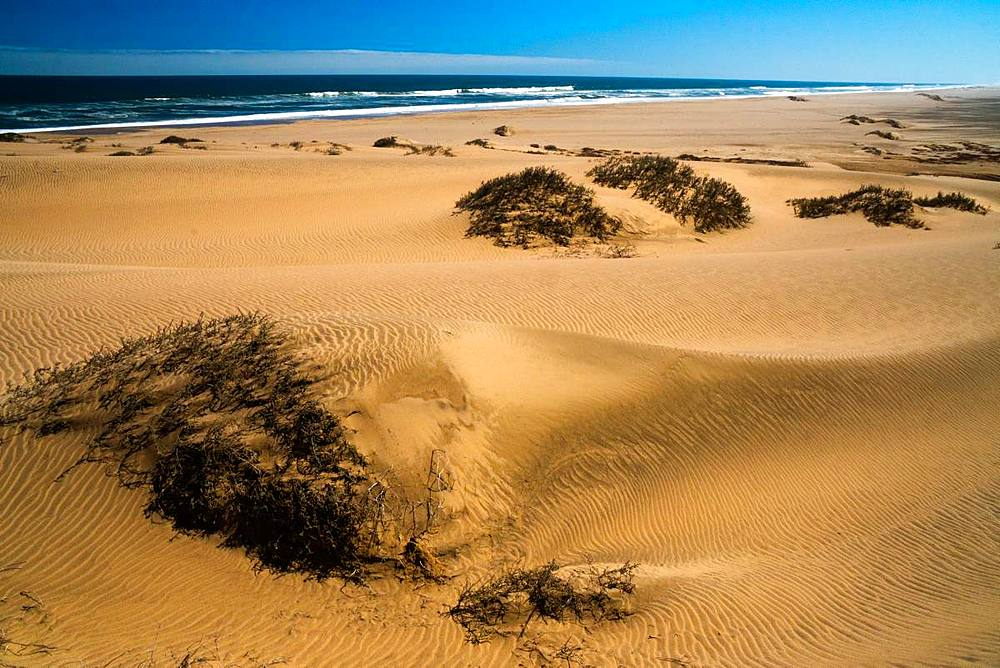 Sand dunes, blown by wind into pronounced furrows stretching into the distance by the sea and surf, near Sandwich Bay, Namibia, Africa