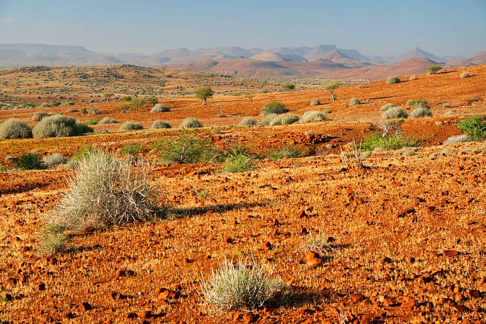 Typical red gravelly terrain, Etendeka, Namibia, Africa - 450-4358