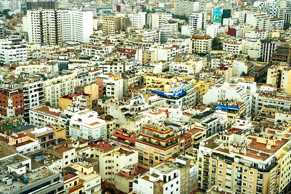 Aerial cityscape, patterned abstract of numerous white and yellow modern buildings, Casablanca, Morocco, North Africa, Africa - 450-4401
