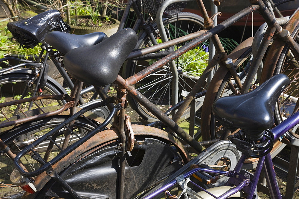 Rusty bicycles, Amsterdam, Netherlands, Europe