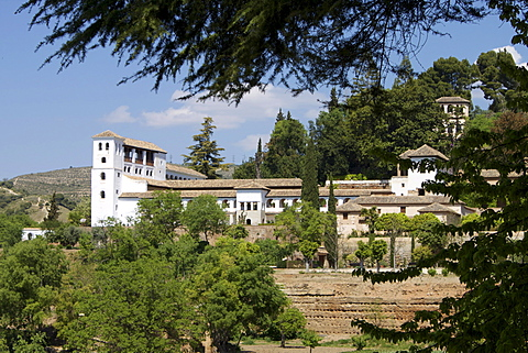 Generalife, Alhambra Palace, UNESCO World Heritage Site, Granada, Andalucia, Spain, Europe - 478-4660