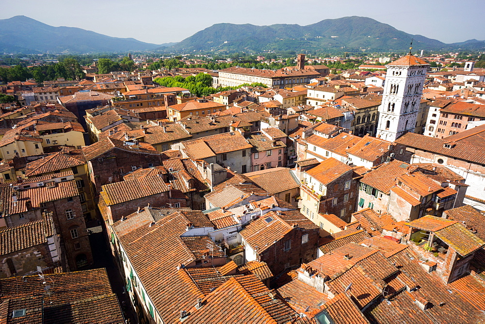 Roofscape from Torre delle Ore, Lucca, Tuscany, Italy, europe