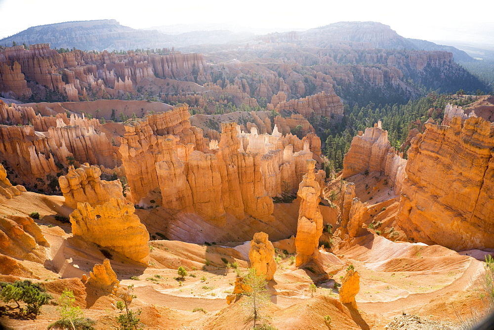 Sunset View Point, Bryce National Park, Utah, United States of America, North America