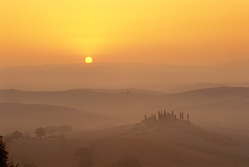 Landscape of fields and cypress trees at sunset in the hills of Tuscany, Italy  - 485-8031