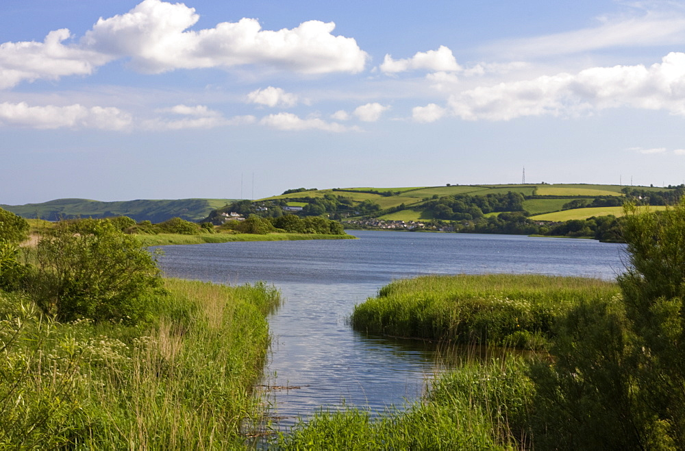 Slapton Ley, South Devon, England, United Kingdom, Europe - 485-9645
