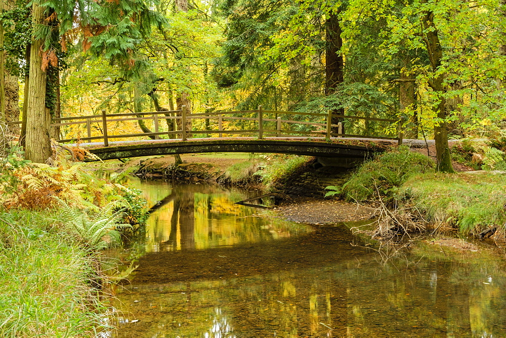 Road Bridge over the Black Water River in autumn, New Forest National Park, Hampshire, England, United Kingdom, Europe - 485-9714