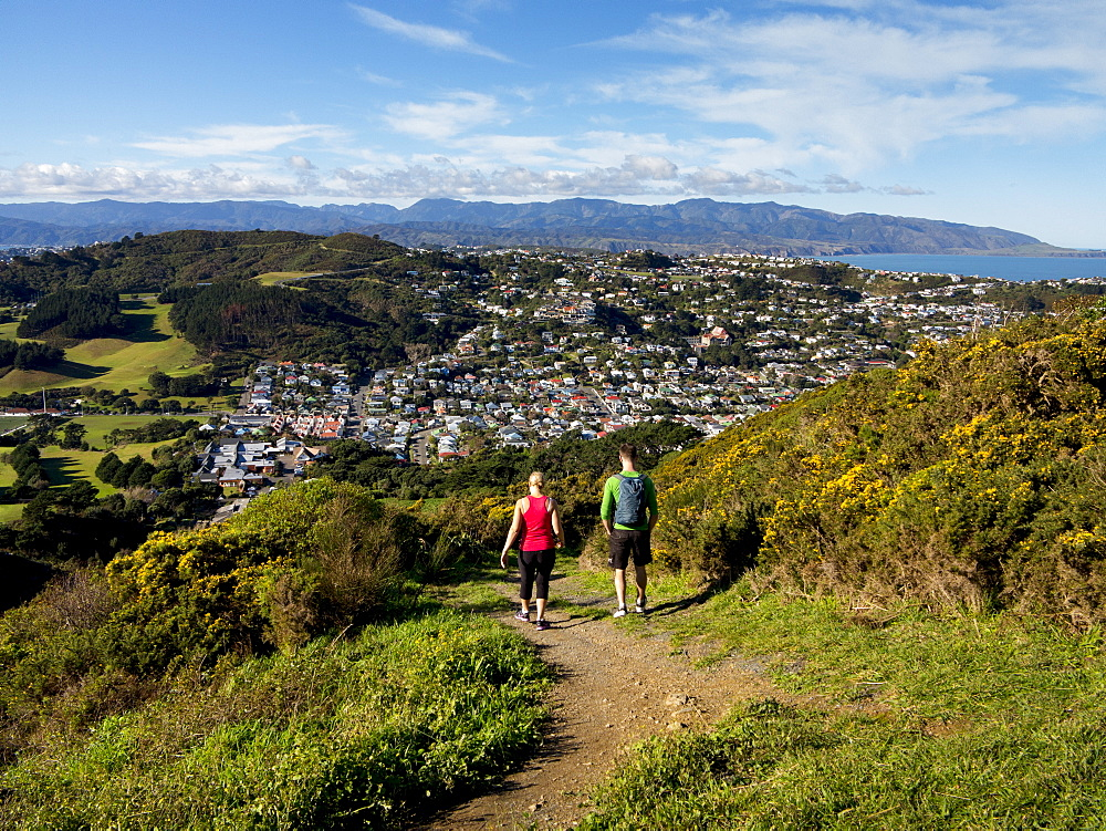Suburbs and Rimutaka Ranges from Kingston with couple on walking track, Wellington, North Island, New Zealand, Pacific - 489-1731