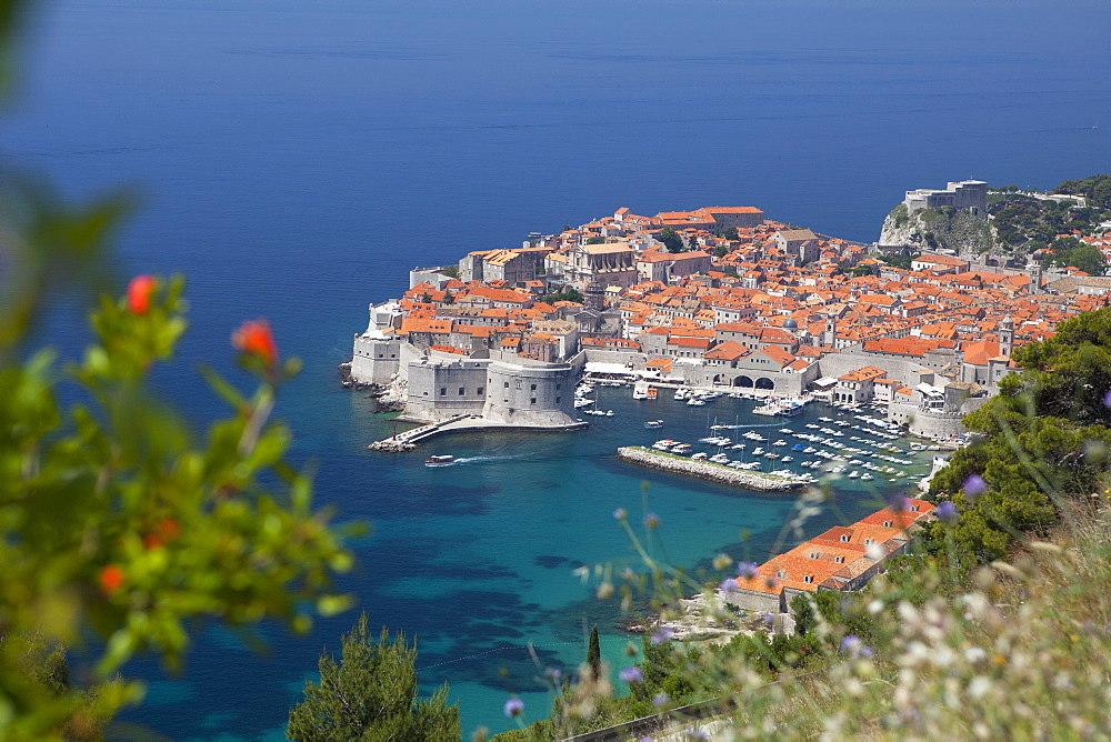 High view of city and harbour from mountain side, Dubrovnik, UNESCO World Heritage Site, Dalmatian Coast, Croatia, Europe  - 526-3768