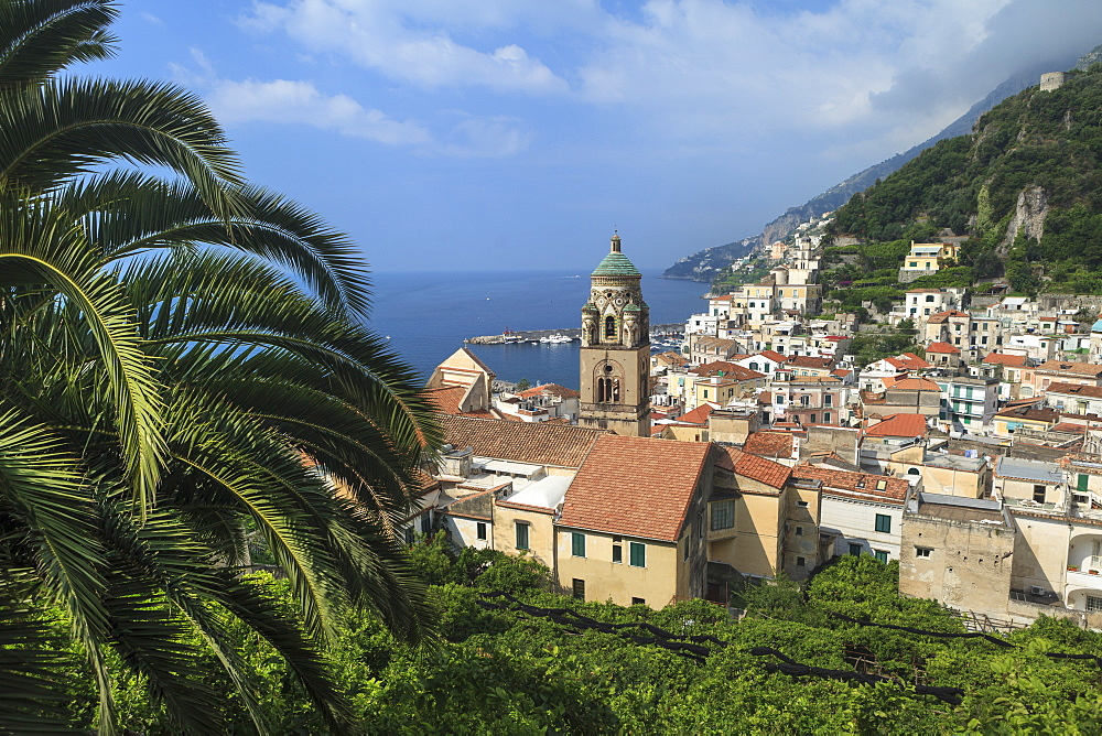 Amalfi, view of town and coast - 526-3832