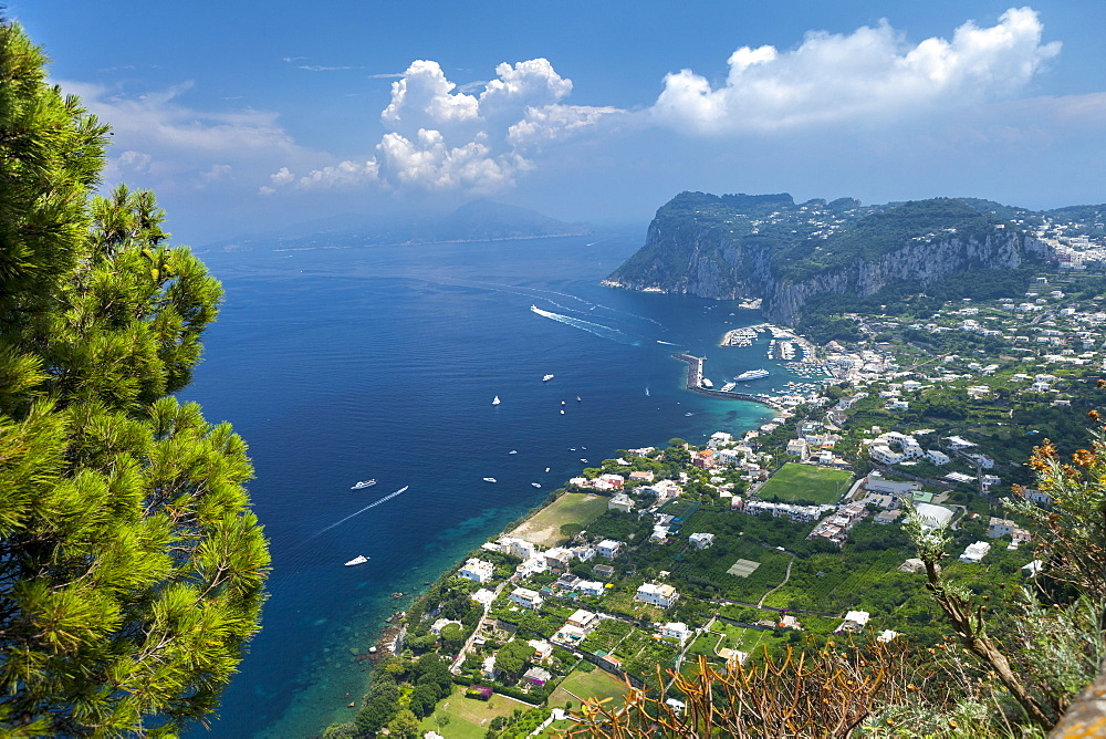 View over harbour towards mainland, Island of Capri, Italy, Mediterranean, Europe - 526-3836