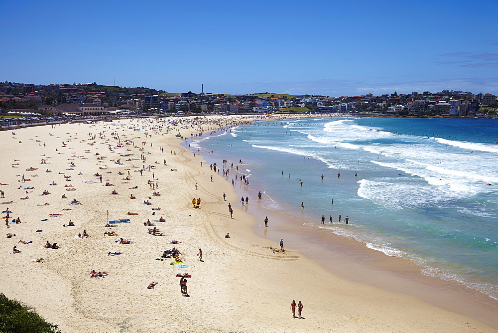 Bondi Beach, Sydney, New South Wales, Australia, Pacific - 627-1261