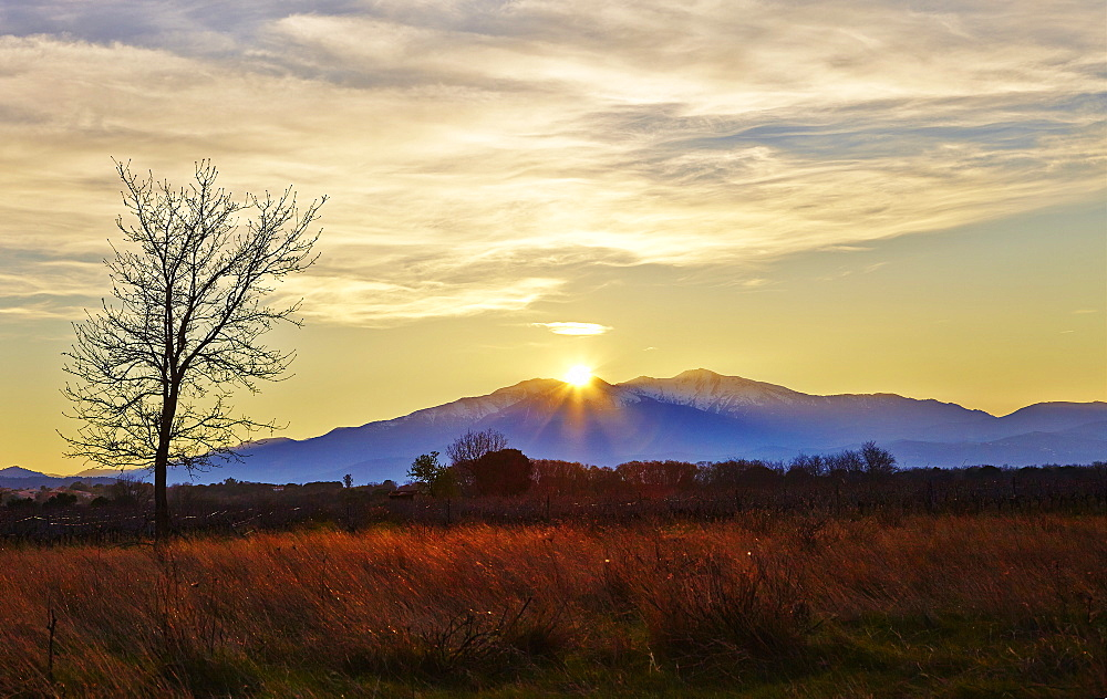 Sunset over Mount Canigou, Languedoc-Roussillon, Pyrenees Orientale, France, Europe