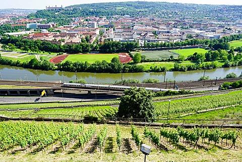 River Main, Wurzburg, Bavaria, Germany, Europe