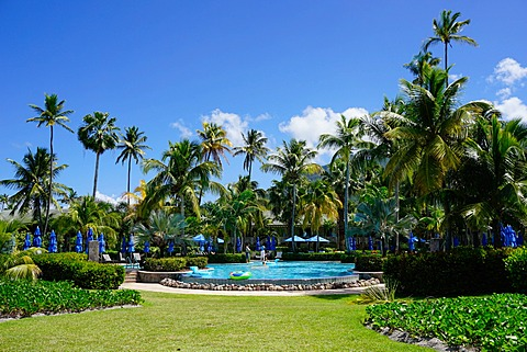 Nevis, St. Kitts and Nevis, Leeward Islands, West Indies, Caribbean, Central America
