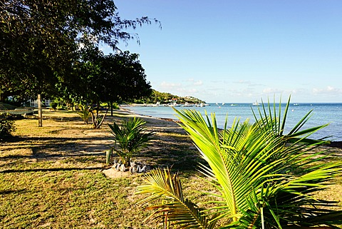 Oualie Beach, Nevis, St. Kitts and Nevis, Leeward Islands, West Indies, Caribbean, Central America