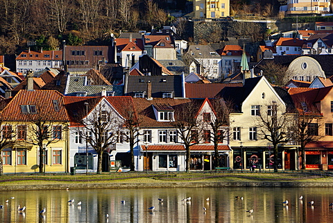 Lille Lungegard lake, Bergen, Norway, Scandinavia, Europe
