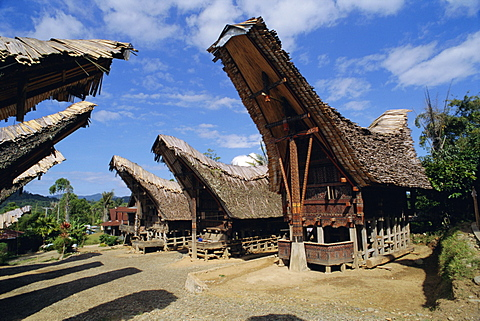Typical houses and granaries, Toraja area, Sulawesi, Indonesia