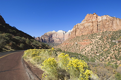 Zion National Park, Utah, United States of America, North America