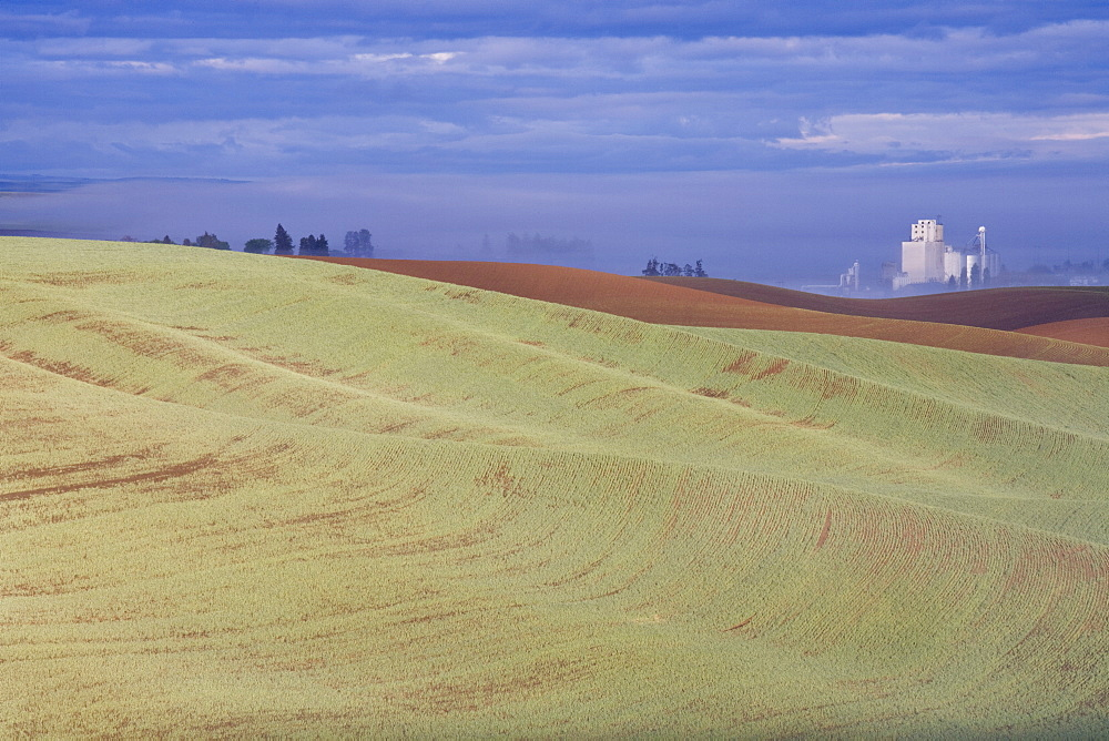 Genesee grain silo, Palouse, Idaho, United States of America, North America