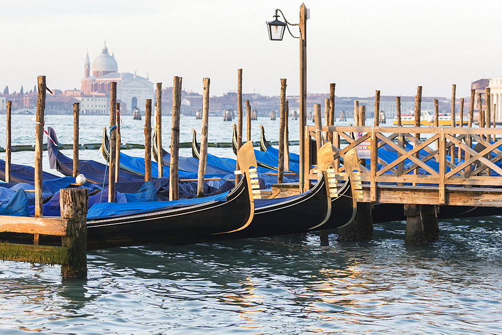 Gondals moored at waterfront, Riva degli Schiavoni, with view to San Giorgio Maggiore, Venice, UNESCO World Heritage Site, Veneto, Italy, Europe - 667-2582