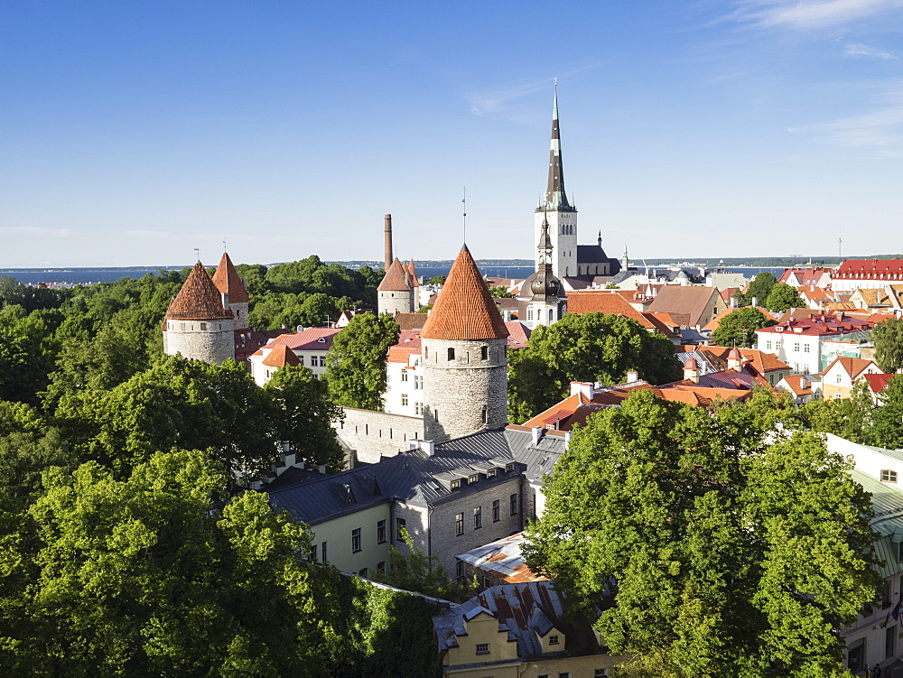 Cityscape view from the Patkuli viewing platform, Old Town, UNESCO World Heritage Site, Tallinn, Estonia, Baltic States, Europe - 667-2626