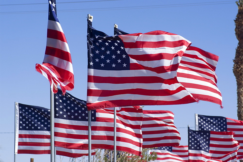 American flags at the Patton Museum, Chiriaco Summit, in the desert where General Patton trained the American troops for the North Africa campaign in World War II, California, United States of America, North America