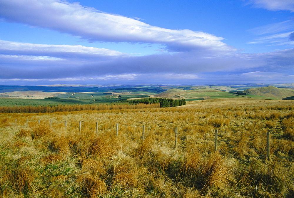 Landscape in the Scottish Borders, Scotland, UK, Europe
