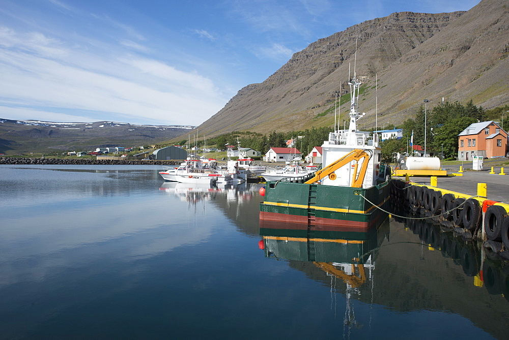 Boats in the harbour at the village of Bildudalur, West Fjords, Iceland, Polar Regions - 685-2625