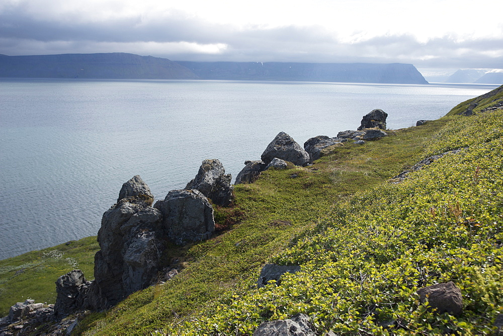 Hornstrandir, a wildly beautiful area abandoned by permanent inhabitants in the 1950s, West Fjords, Iceland, Polar Regions - 685-2627