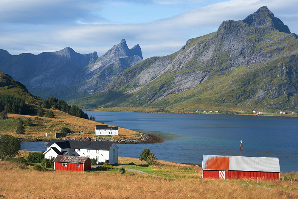 Farmhouses in the country, Lofoten Islands, Nordland, Norway, Scandinavia, Europe - 685-2685