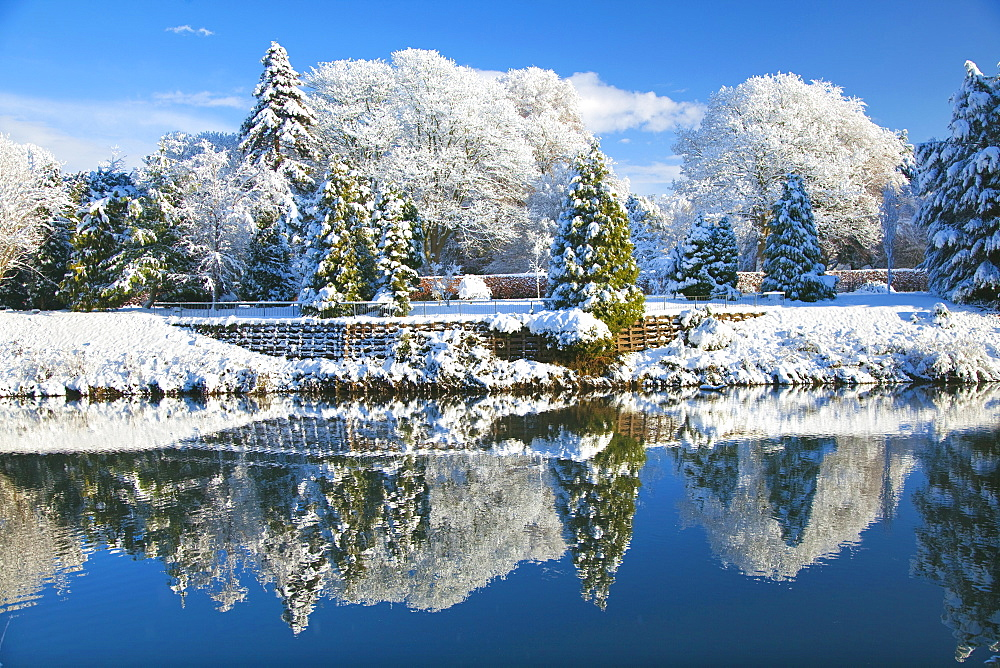 Bute Park, Snow, Cardiff, Wales, UK - 696-834