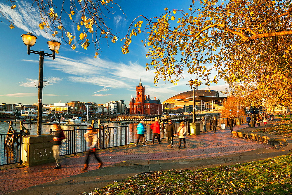 Autumn in Cardiff Bay, Wales, United Kingdom, Europe - 696-863