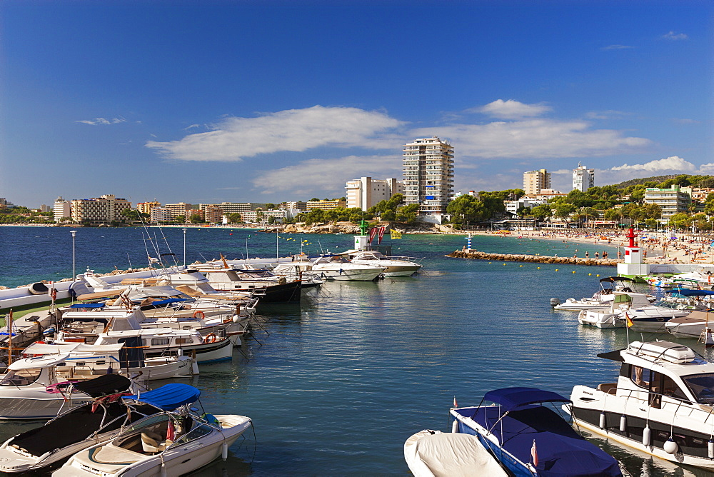 Palma Nova Marina, Mallorca, Balearic Islands, Spain, Mediterranean, Europe - 696-870