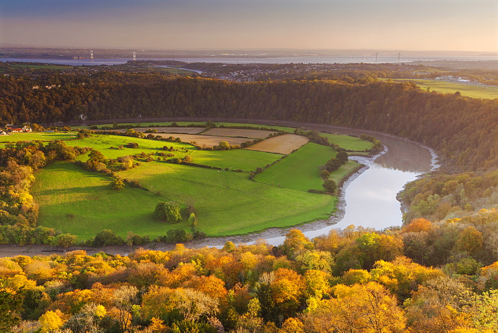 Upper Wyndcliff, River Wye and Severn Estuary, Wye Valley, Monmouthshire, Wales, United Kingdom, Europe - 696-887