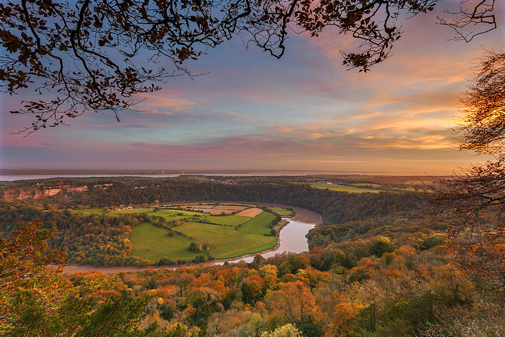 Upper Wyndcliff, River Wye and Severn Estuary, Wye Valley, Monmouthshire, Wales, United Kingdom, Europe - 696-888