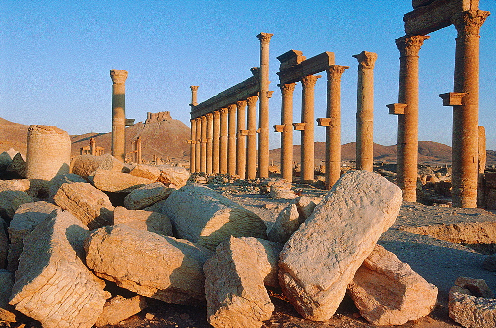Syria, Palmyra Oasis, The Roman City Ruins, Remnants Of The 1200m Colonnade Edging The Cardo (Main Road In The Roman City Center) , In Foreground Collapsed Walls After Several Earthquakes, At Back The Arab Castle On Top Of A Hill