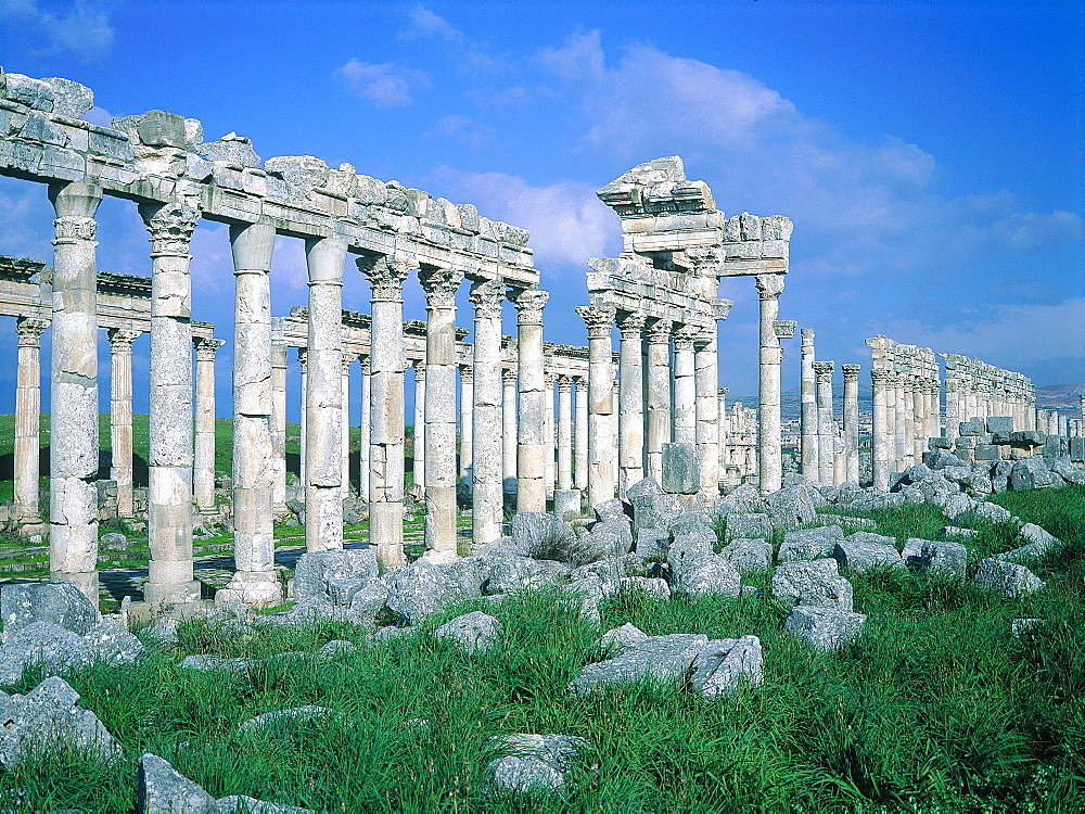 Syria, Orontes Valley, Apamea, The Colonnnade (Corinthian Style Capitals) Lining The Cardo In The Roman City