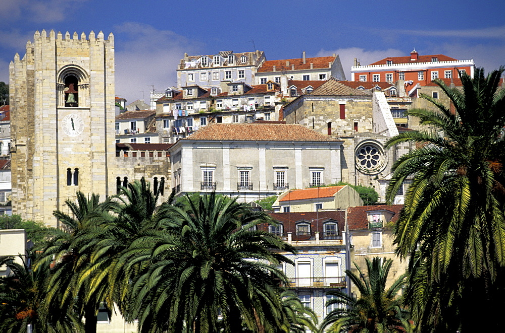 Portugal, Lisbon, Overview On The City (Alfama) With Cathedra (Se) , Palmes At Fore