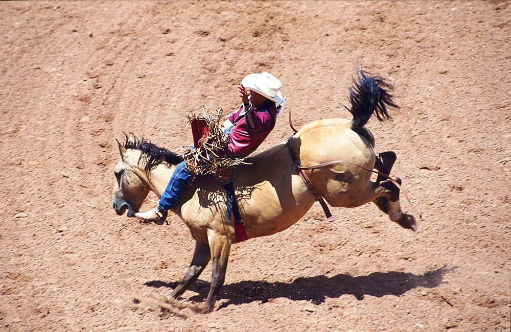 Usa, New-Mexico, Intertribal Ceremonial Rodeo