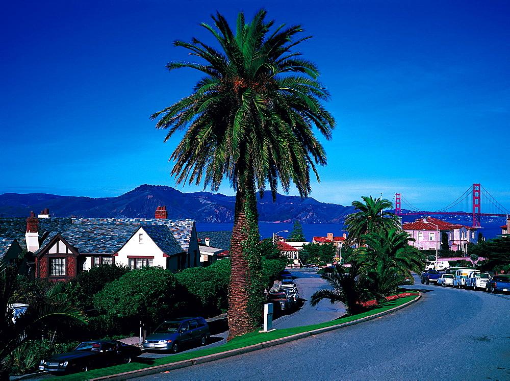 Lincoln Boulevard & Golden Gate At Rear, San Francisco, California, Usa