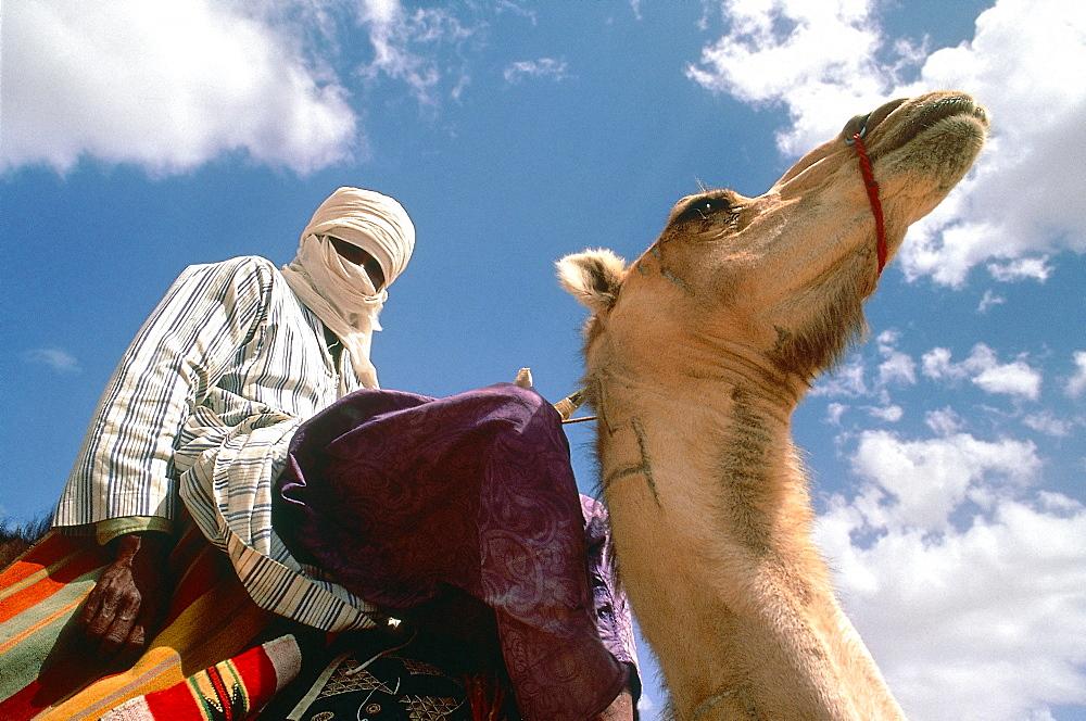 Algeria, Sahara, Tassili M'ajjer, Vicinity Of Oasis Of Djanet, Tuareg Riding His Camel