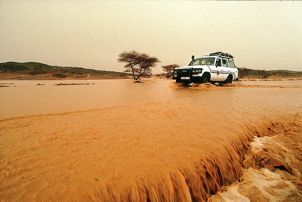 Algeria, Sahara, Hoggar, Tamanrasset, River Flooding After Heavy Rains First Time After 8 Years Drought *** Local Caption ***