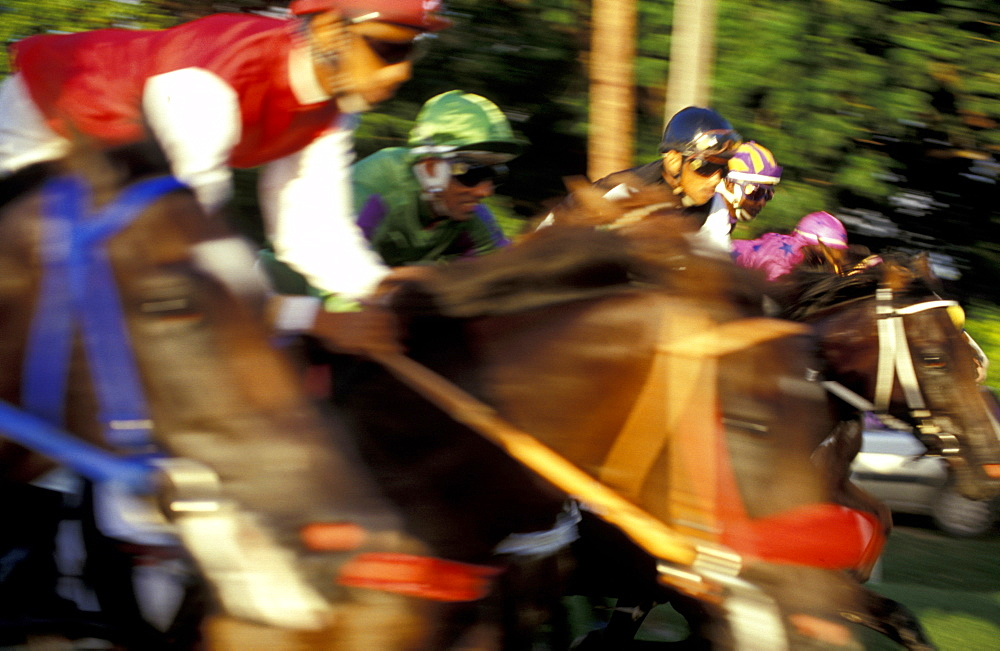 Caribbean, West Indies, Barbados, Bridgetown, Savannah Garrison Ancient British Barracks, Horses Races, The Yearly Grand Derby