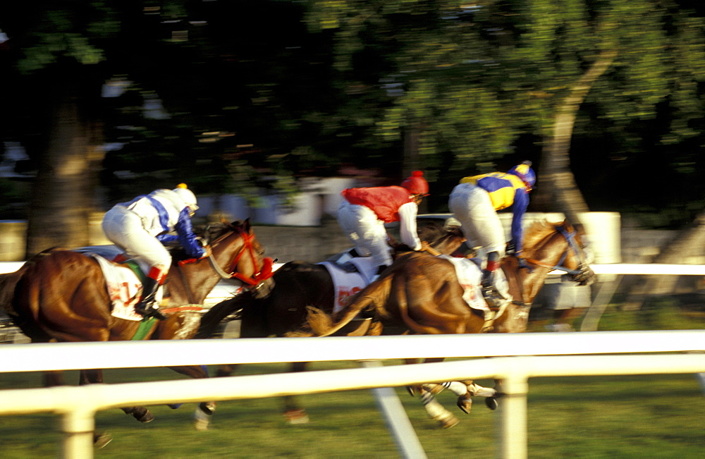 Caribbean, West Indies, Barbados, Bridgetown, Savannah Garrison Ancient British Barracks, Horses Races, The Yearly Grand Derby