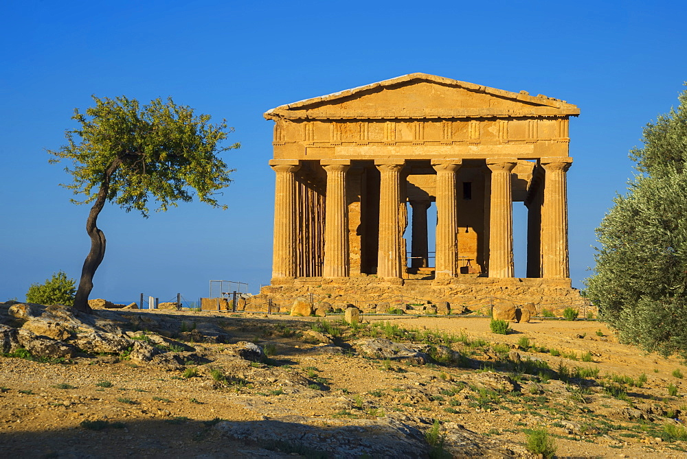 Temple of Concordia, Valley of the Temples, Agrigento, UNESCO World Heritage Site, Sicily, Italy, Europe - 718-2142