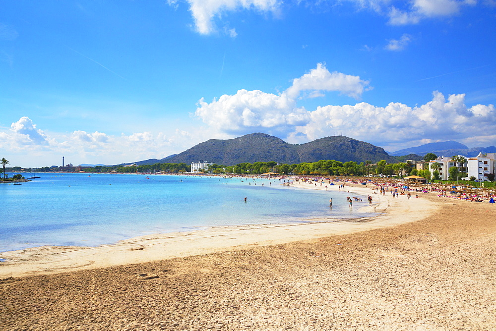 Beach of Port de Alcudia, Mallorca (Majorca), Balearic Islands, Spain, Mediterranean, Europe - 718-2273