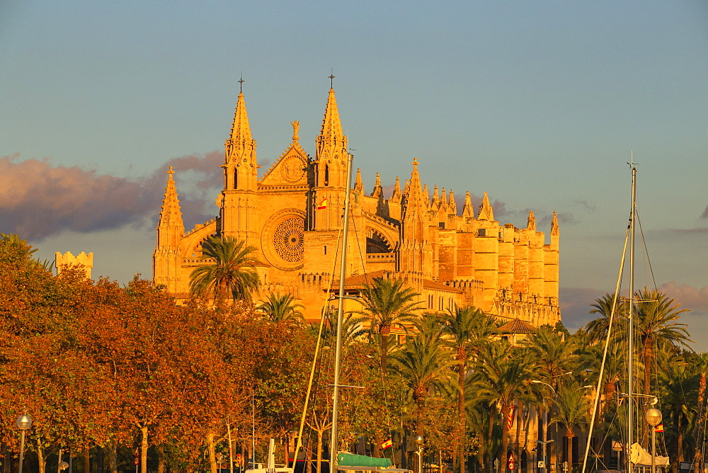 La Seu Cathedral, Palma de Mallorca, Mallorca (Majorca), Balearic Islands, Spain, Europe - 718-2278